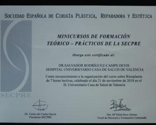 V Curso de Rinoplastia para Cirujanos Plásticos